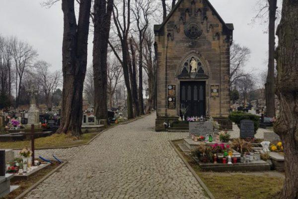 cmentarz - ekshumacje